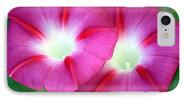 IPhone Case featuring the photograph Morning Glories by Sheila Brown