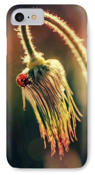 IPhone Case featuring the photograph Morning Impresion With Ladybug by Jaroslaw Blaminsky
