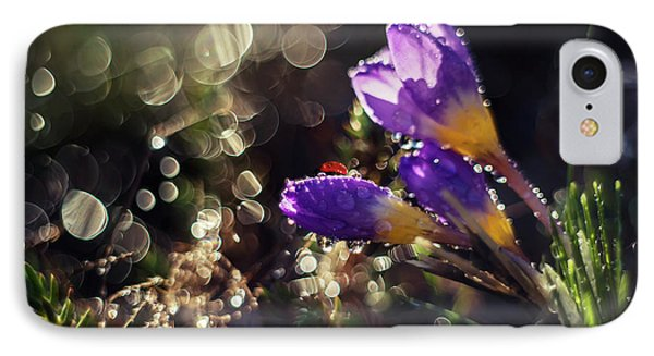 IPhone Case featuring the photograph Morning Impression With Violet Crocuses by Jaroslaw Blaminsky
