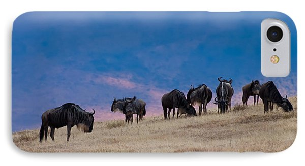 Morning In Ngorongoro Crater IPhone Case by Adam Romanowicz