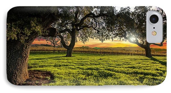 Morning In Wine Country IPhone Case by Jon Neidert