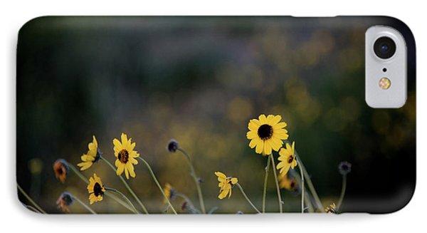 IPhone Case featuring the photograph Morning Light by Kelly Wade