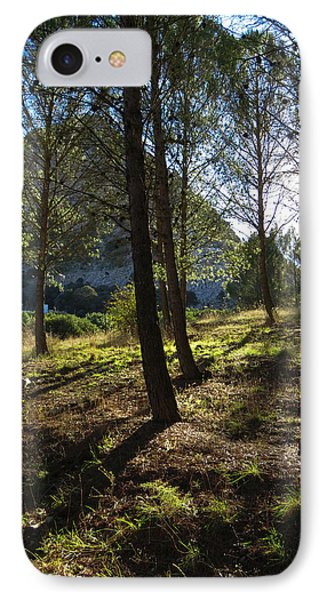 morning light under the pines - La Madre mountain IPhone Case