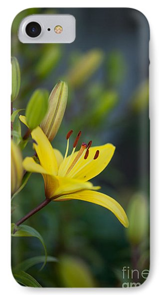 Morning Lily IPhone Case by Mike Reid