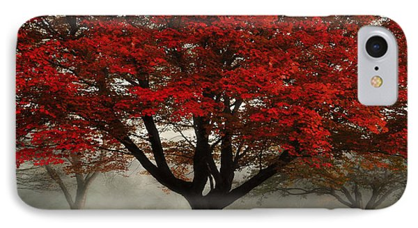 IPhone Case featuring the photograph Morning Rays In The Forest by Ken Smith