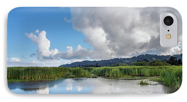 Morning Reflections On A Marsh Pond IPhone Case by Greg Nyquist