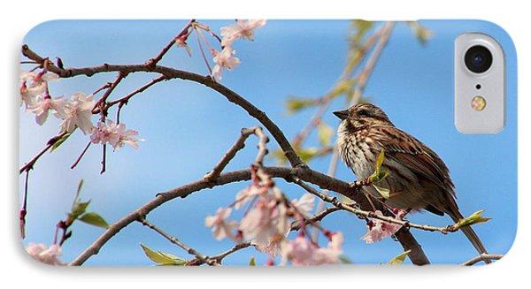 Morning Song Sparrow Phone Case by Rosanne Jordan