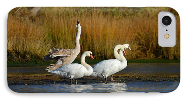 Morning Stretch In November IPhone Case by Dianne Cowen