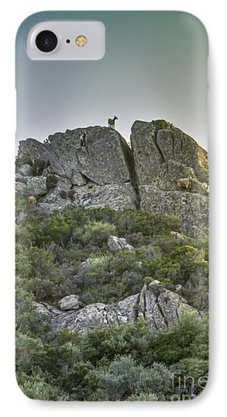 Morning Sun Lit Rocky Hill Greece IPhone Case by Jivko Nakev