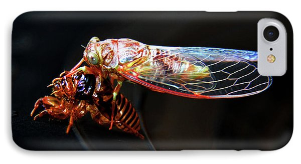 Morphing IPhone Case by David Lee Thompson