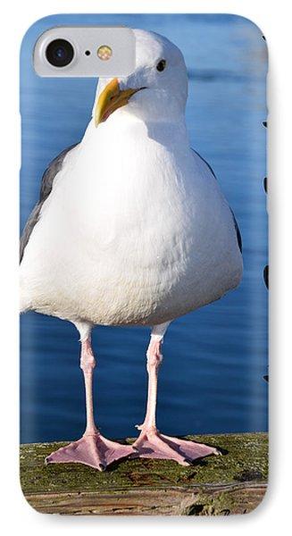 Morro Bay Seagull IPhone Case