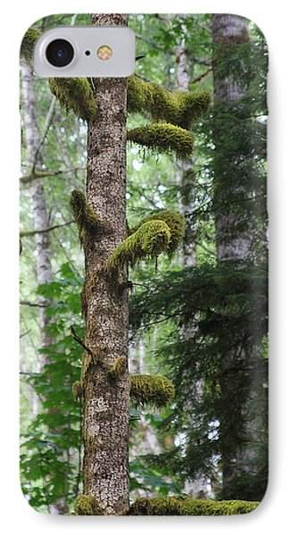 Moss-draped Trees On Tiger Mountain Wt Usa Phone Case by Christine Till