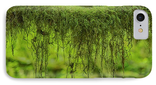 Moss Garland IPhone Case by Stephen Stookey