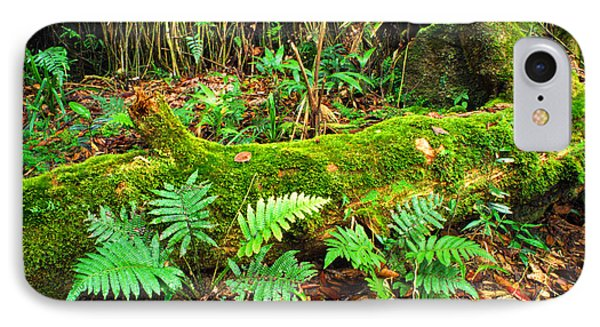 Moss On Fallen Tree And Ferns Phone Case by Thomas R Fletcher