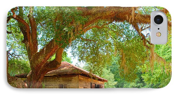 Mossy Tree In Natchez IPhone Case