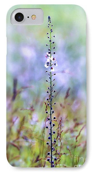 IPhone Case featuring the photograph Moth Mullein - Wildflower Art by Kerri Farley