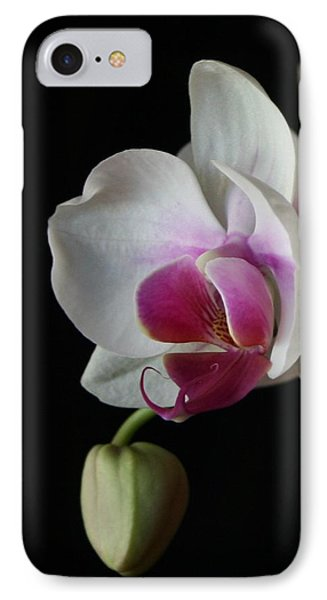 Moth Orchid 1 IPhone Case by Marna Edwards Flavell