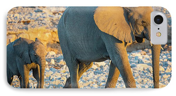 Mother And Baby Elephant IPhone Case