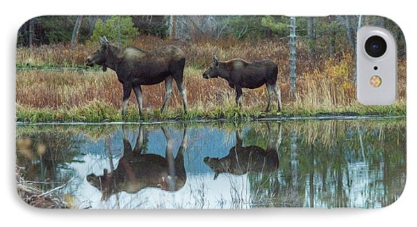 Mother And Baby Moose Reflection IPhone Case by Rebecca Margraf