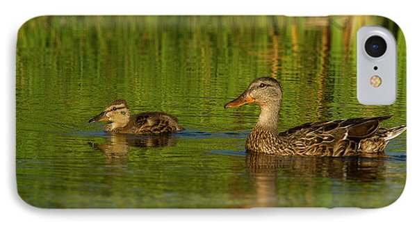 IPhone Case featuring the photograph Mother And Child Mallards by Jean Noren
