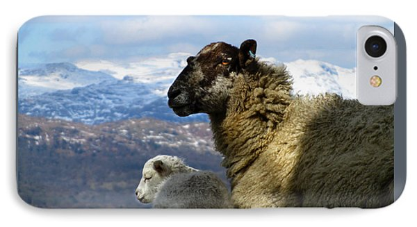 IPhone Case featuring the photograph Mother And Lamb by RKAB Works