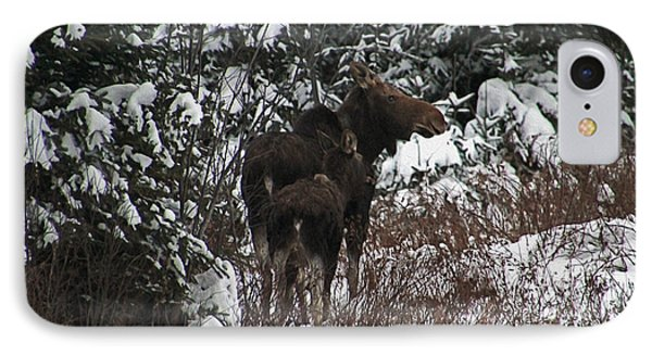 Motherly Moose IPhone Case by Cheryl Aguiar