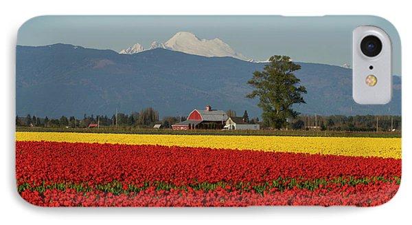 Mount Baker Skagit Valley Tulip Festival Barn IPhone 7 Case by Mike Reid