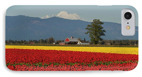 Mount Baker Skagit Valley Tulip Festival Barn IPhone Case by Mike Reid