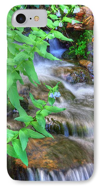 Mountain Bluebells IPhone Case by Utah Images