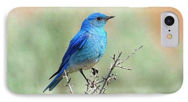 Mountain Bluebird Beauty IPhone 7 Case by Mike Dawson