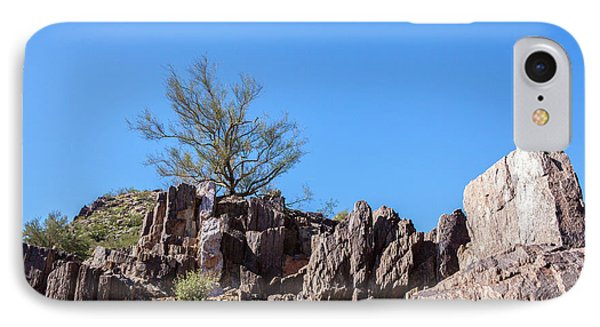 IPhone Case featuring the photograph Mountain Bush by Ed Cilley