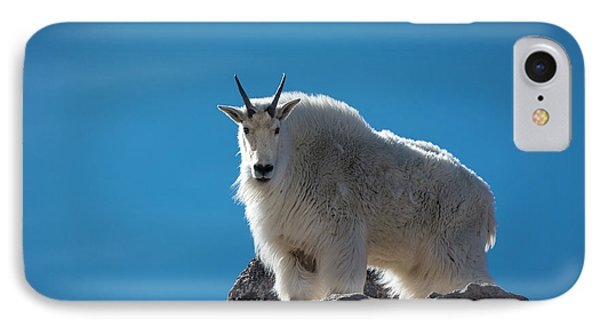 IPhone Case featuring the photograph Mountain Goat 3 by Gary Lengyel