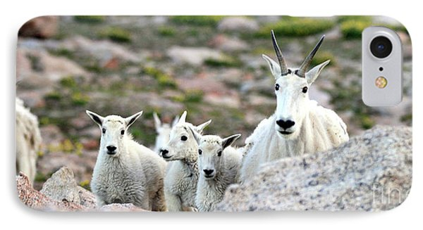 IPhone Case featuring the photograph Mountain Goat Family Panorama by Scott Mahon
