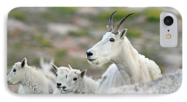 IPhone Case featuring the photograph Mountain Goat Family by Scott Mahon