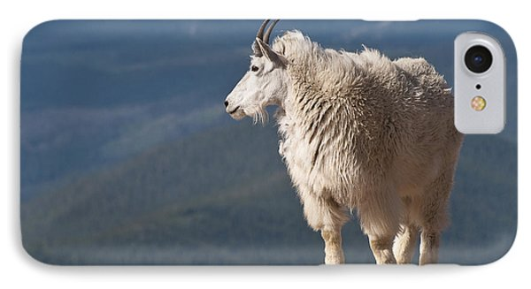 IPhone Case featuring the photograph Mountain Goat by Gary Lengyel