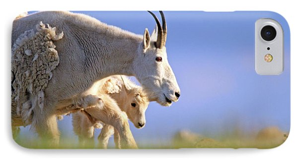 IPhone Case featuring the photograph Mountain Goat Light by Scott Mahon
