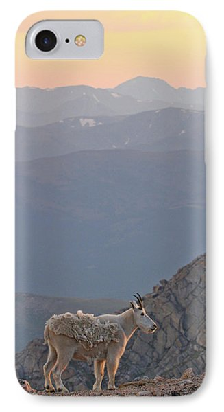 IPhone Case featuring the photograph Mountain Goat Sunset by Scott Mahon
