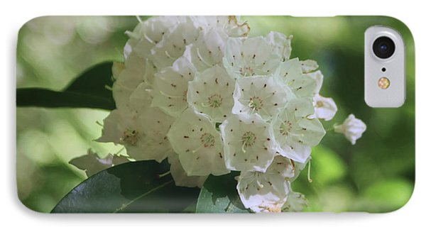 IPhone Case featuring the photograph Mountain Laurel - Spring by Nikolyn McDonald
