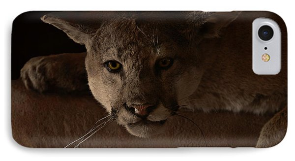 Mountain Lion A Large Graceful Cat Phone Case by Christine Till