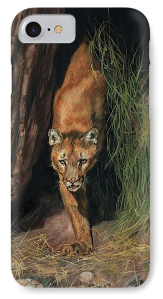 Mountain Lion Emerging From Shadows IPhone Case by David Stribbling