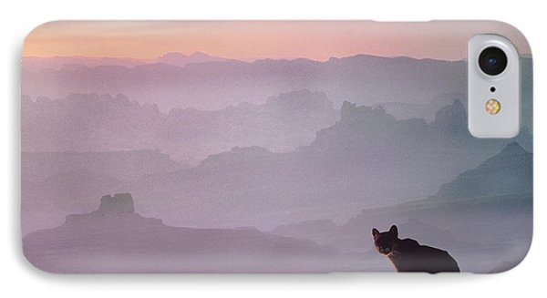 Mountain Lion IPhone Case by Tim Fitzharris