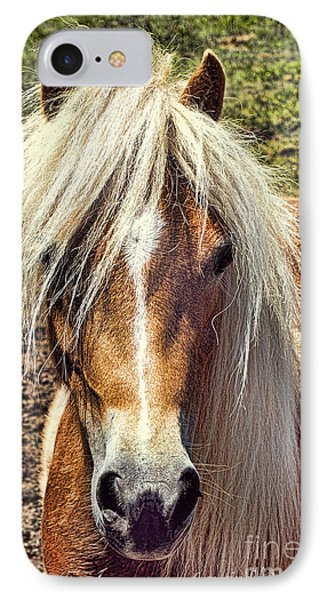 Mountain Pony IPhone Case by Laurinda Bowling