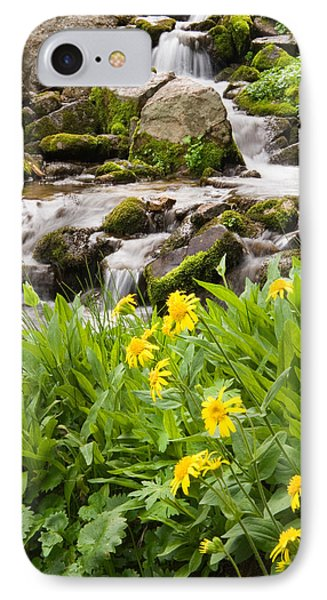 Mountain Waterfall And Wildflowers IPhone Case by Utah Images