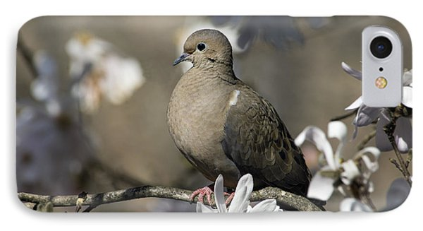 Mourning Dove - D009888 IPhone Case by Daniel Dempster