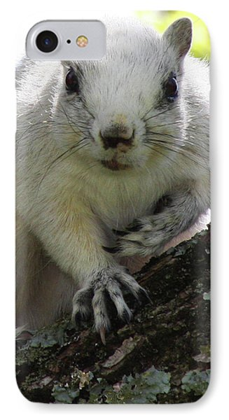 Mr. Inquisitive I  Phone Case by Betsy Knapp