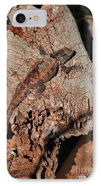 IPhone Case featuring the photograph Mr. Lizard - Tucson Arizona by Donna Greene