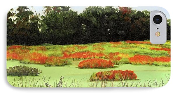Mud Lake Marsh IPhone Case by Lynne Reichhart