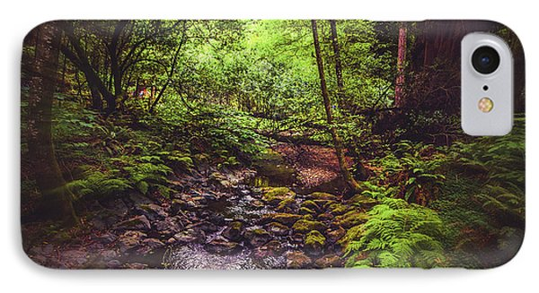Muir Woods No. 3 IPhone Case by Laura DAddona