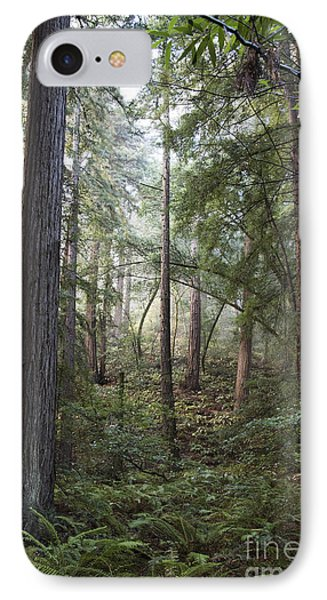 IPhone Case featuring the photograph Muir Woods Tranquility by Sandra Bronstein