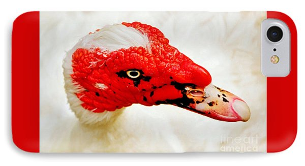 Muscovy Duck Phone Case by Kaye Menner